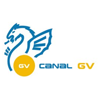 Channel logo TVVI (Canal GV)